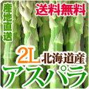 アスパラ 2Lサイズ 1kg 送料無料 北海道産アスパラガス グリーンアスパラ 春の野菜 春野菜 バーベキュー BBQ