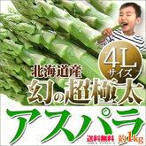 アスパラギフト北海道【4Lサイズ1kg幻の超極太グリーンアスパラガス】送料無料【こちらの商品はご予約販売です】