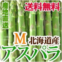 アスパラガス Mサイズ1kg 送料無料 北海道産 アスパラ グリーンアスパラ 春の野菜 春野菜 バーベキュー BBQ