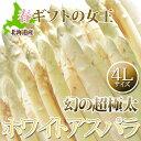 ホワイト アスパラ ギフト 北海道 【 4Lサイズ 1kg 幻の超極太 ホワイトアスパラガス】送料無料 白