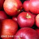 りんご ひめかみ 10kg 26〜36玉 北海道 余市産 産地直送 葉とらずリンゴ 果物 フルーツ 贈り物 内祝 お返し ギフト…