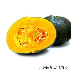 かぼちゃ 南瓜 5個セット 北海道産 贈り物 内祝 お返し ギフト