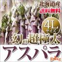 幻の超極太 紫アスパラ 4L(極太) 北海道産母の日 贈り物 内祝い お返し ギフト 贈答 送料無料 春の野菜 春野菜