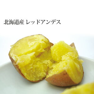 【新じゃが】レッドアンデス 10kg 北海道産 ジャガイモ 送料無料 贈り物 内祝 お返し ギフト 秋の味覚