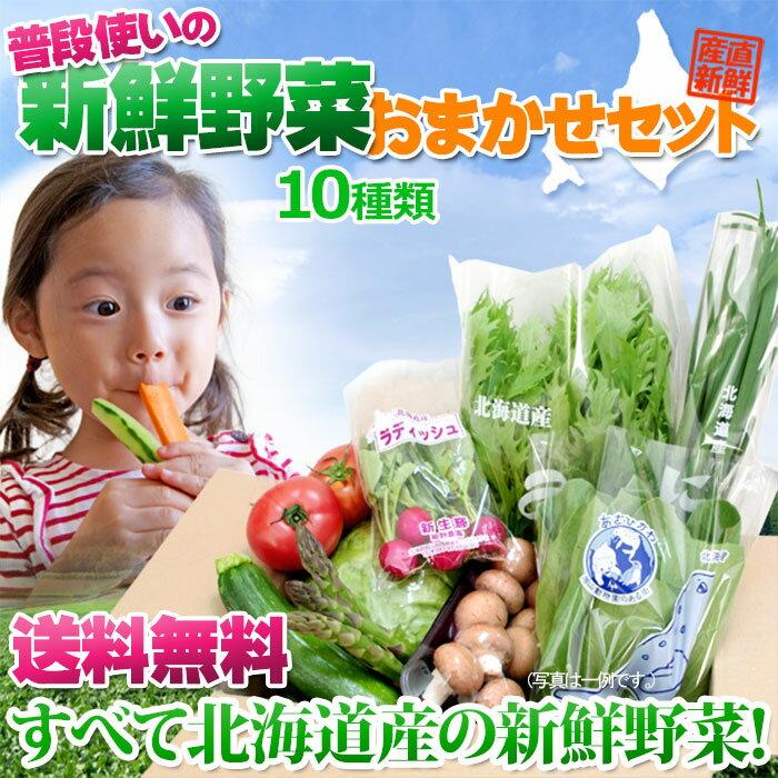 北海道産 野菜 【 農家厳選 旬の野菜セット 詰め合わせ10種】 送料無料