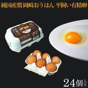 平飼い卵22個 (+2個保証分)計24個 ななエッグ 北海道七飯町産 送料無料 純国産地鶏 岡崎おうはん 有精卵 たまご 卵 循環型農業 SDGs サスティナブル