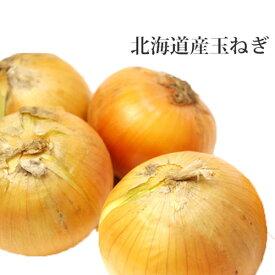 たまねぎ 北海道産 5kg 玉ねぎ贈り物 ギフト 札幌のたまねぎ 秋の味覚 バーベキュー BBQ