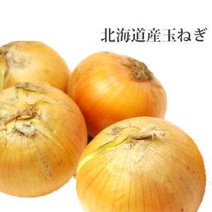 たまねぎ 北海道産 10kg 玉ねぎ 贈り物 ギフト 送料無料 バーベキュー BBQ