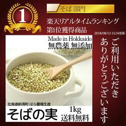そばの実国産1kg送料無料北海道新得産無農薬化学肥料不使用蕎麦ソバの実そばのみスーパーフードレジスタントプロテイン食物繊維ビタミンB2