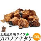 カバノアナタケ北海道産貴重な国産かばのあなたけ茶チャーガ送料無料