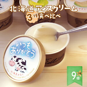 アイスクリームギフト 3種 9個セット 【いつもありがとうパッケージ 北海道 十勝 カウベル アイス クリーム】 3種類のアイス バニラ 赤肉 青肉 メロン お返し 内祝い 誕生日 スイーツ ご当地