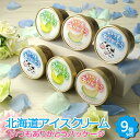 【お歳暮 ギフト】アイスクリームギフト 3種 9個セット 【いつもありがとうパッケージ 北海道 十勝 カウベル アイス …