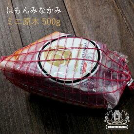 国産 生ハム はもんみなかみ ミニ原木 500g ぐんま麦豚 贈り物 ギフト 贈答用 ハム おつまみ