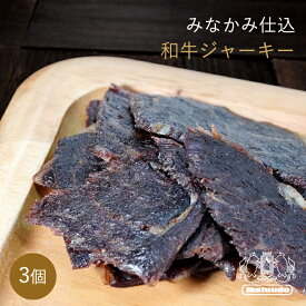 国産 黒毛和牛使用「みなかみ仕込み」 和牛ジャーキー 48g×3パック 燻製 おつまみ ジャーキー