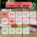 【送料無料】KIT001 アイラボの「子宮頸がん検査」【あす楽対応】