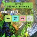 【送料無料】KIT201アイラボの「咽頭のリン・クラチェック」【あす楽対応】