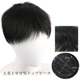 メンズ用 人毛100% トップピース 部分ウィッグ ヘアピース つむじ ショート 前髪ウィッグ トップカバー 増毛部分かつら ウイッグ 付け毛 つけ毛 男性 WIG MGH 014