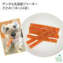 デンタル乳酸菌ジャーキー ささみ(1本×24袋)   犬 犬用 無添加おやつ デンタルケア 口腔内ケア 歯磨き ササミジャーキー イリオスマイル