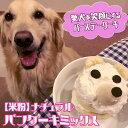 【米粉】ナチュラルパンケーキミックス 150g | バースーケーキ 手作りおやつ 手作りごはん イリオスマイル
