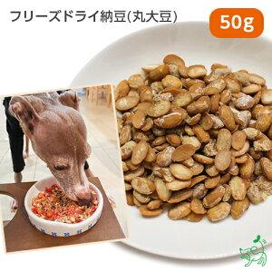 【無添加 国産】北海道産 フリーズドライ納豆(丸大豆) 50g | イリオスマイル ドッグフード ドックフード 犬用おやつ 犬 おやつ 無添加おやつ 手作りごはん