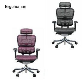 Ergohuman PRO エルゴヒューマン プロ 【EHP-HAM ハイタイプ】 チェアー 椅子 ワーキングチェア【送料無料】