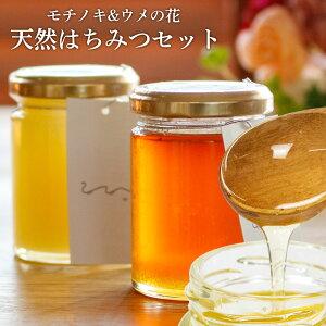 送料無料 UU はちみつ食べ比べ2個セット モチノキ ウメノ花 ニホンミツバチ 蜂蜜 濃厚 天然はちみつ 国産 非加熱 希少な日本蜜蜂の 純粋ハチミツ 日本製 ユーユー
