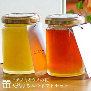 【ギフト】送料無料 UU はちみつ食べ比べ2個セット モチノキ ウメの花 UU ニホンミツバチ 蜂蜜 濃厚 天然はちみつ 国産 非加熱 希少な日本蜜蜂の 純粋ハチミツ 日本製 ユーユー