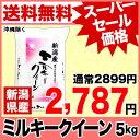ミルキークイーン 5kg H28年新潟産 米 【送料無料】(沖縄・佐渡を除く)【楽天 スーパーSALE】