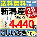 こしいぶき 10kg(5kg×2) H28年新潟産 米 【送料無料】(沖縄・佐渡を除く)