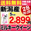 ミルキークイーン 5kg H28年新潟産 米 【送料無料】(沖縄・佐渡を除く)