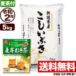 【麦茶付き】新潟県産 こしいぶき 5kg 令和2年産 米 【送料無料】(北海道、九州、沖縄除く)
