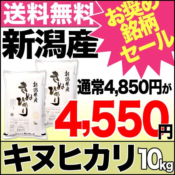 キヌヒカリ 10kg(5kg×2) 29年産 新潟産 米【送料無料】(沖縄を除く)【お奨め銘柄セール】