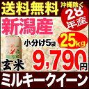 ミルキークイーン 25kg 玄米 H28年新潟産 米 【送料無料】(沖縄・佐渡を除く)