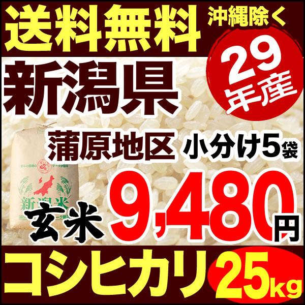 新潟産コシヒカリ 山並 25kg 玄米 29年産 米 【送料無料】(沖縄を除く)