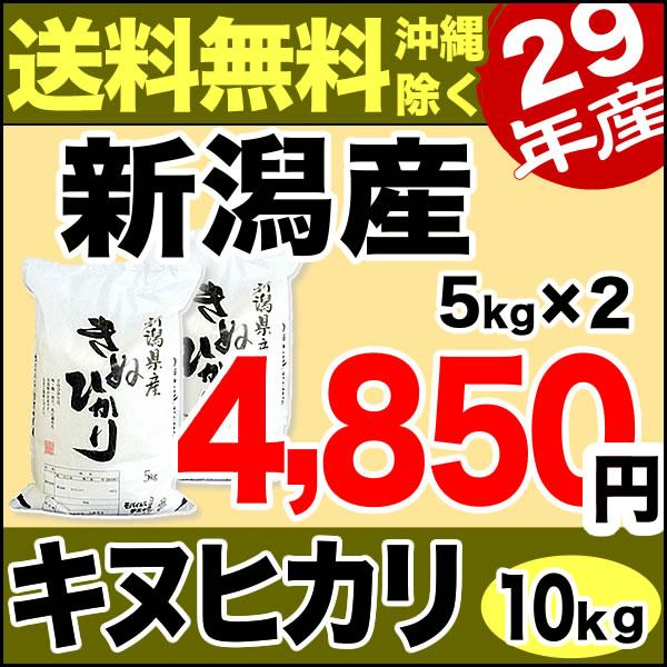 キヌヒカリ 10kg(5kg×2) 29年産 新潟産 米 【送料無料】(沖縄を除く)