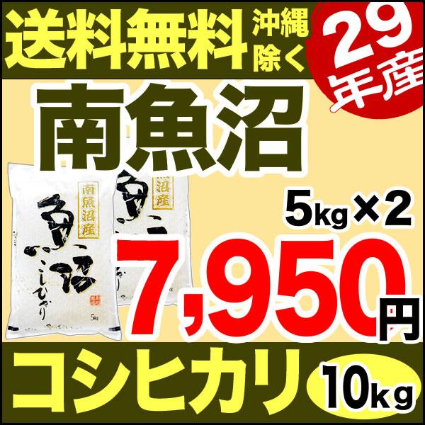 南魚沼産コシヒカリ 10kg(5kg×2) 29年産 新潟産 米 【送料無料】(沖縄を除く)