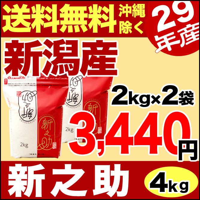 新潟産 新之助 4kg(2kg×2袋) 平成29年産 【送料無料】(沖縄を除く)
