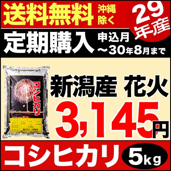 【定期購入】新潟産コシヒカリ 花火 5kg 29年産 米 【送料無料】(沖縄を除く)