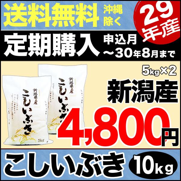 【定期購入】こしいぶき 10kg(5kg×2) 29年産 新潟産 米 【送料無料】(沖縄を除く)