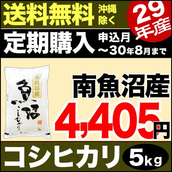 【定期購入】南魚沼産コシヒカリ 5kg 29年産 新潟産 米 【送料無料】(沖縄を除く)