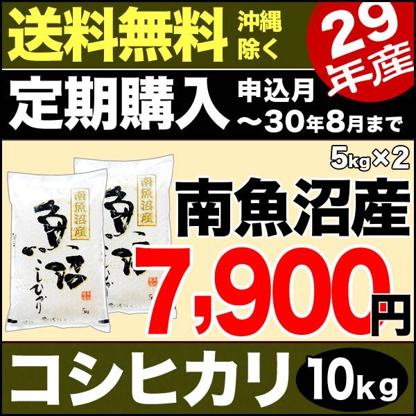 【定期購入】南魚沼産コシヒカリ 10kg(5kg×2) 29年産 新潟産 米 【送料無料】(沖縄を除く)
