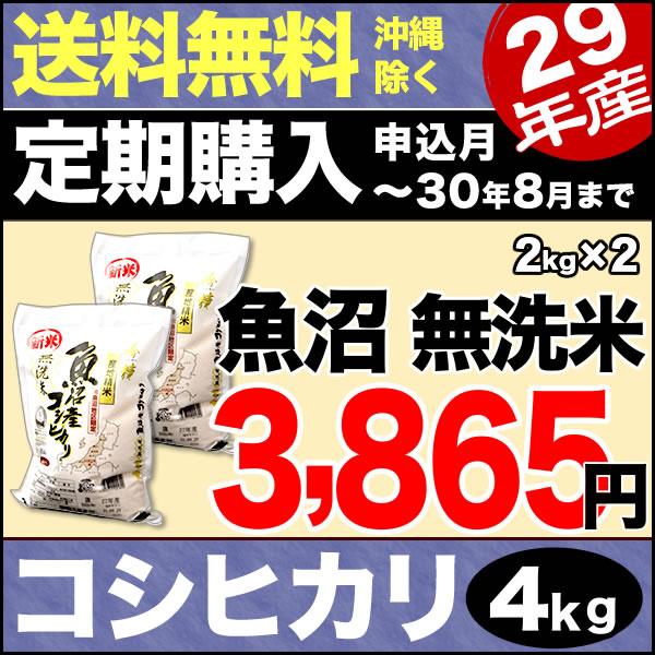 【定期購入】無洗米吟精 南魚沼産コシヒカリ 4kg (2kg×2) 29年産【送料無料(沖縄を除く)】