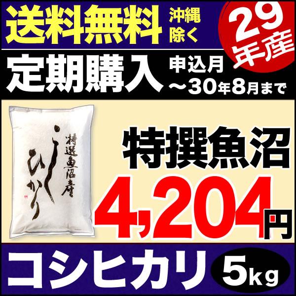 【定期購入】魚沼産コシヒカリ 特選 5kg 29年産 新潟産 米 【送料無料】(沖縄を除く)