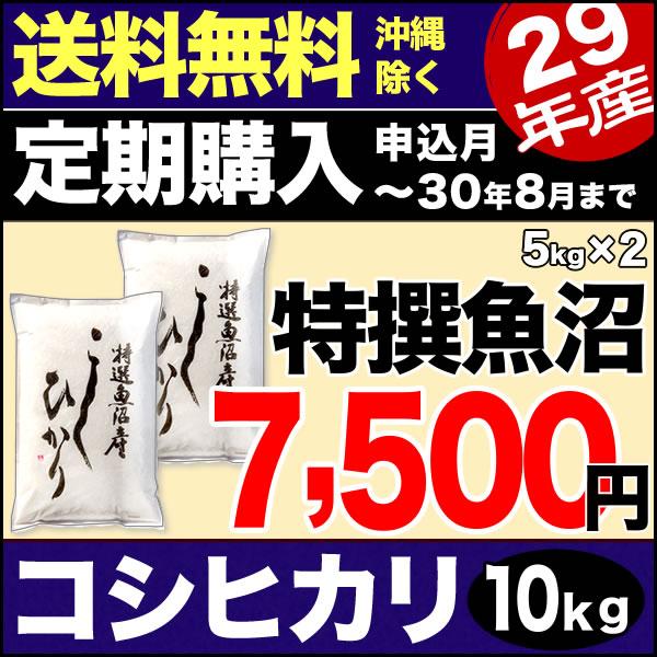 【定期購入】魚沼産コシヒカリ 特選 10kg(5kg×2) 29年産 新潟産 米 【送料無料】(沖縄を除く)
