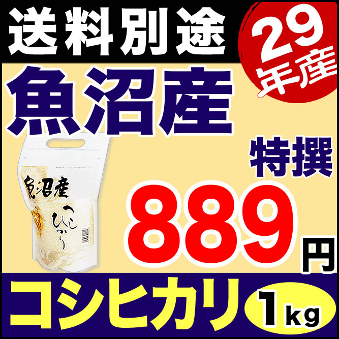 【新米】魚沼産コシヒカリ 特選 1kg 29年産 新潟産 米 【送料別】