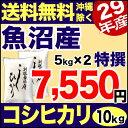 魚沼産コシヒカリ 特選 10kg(5kg×2) 29年産 新潟産 米 【送料無料】(沖縄を除く)