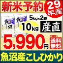 【新米予約】魚沼産コシヒカリ 産直 10kg(5kg×2袋) 平成29年産 新米【送料無料】(沖縄を除く)