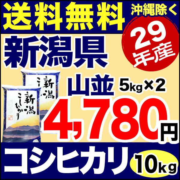 新潟産コシヒカリ 山並 10kg(5kg×2) 29年産 米 【送料無料】(沖縄を除く)