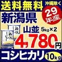 【新米】新潟産コシヒカリ 山並 10kg(5kg×2) 29年産 米 【送料無料】(沖縄を除く)