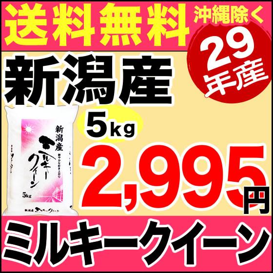 ミルキークイーン 5kg 29年産 新潟産 米 【送料無料】(沖縄を除く)